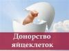 Клініка співпрацює з жінками, що бажають стати сурогатними мамами та донорами яйцеклітин