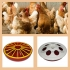 Поилка для цыплят и другие виды поилок для птицы