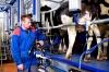 обладнання компанії ДеЛавль для молочно-товарних ферм