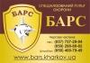 Установка охранной сигнализации: Автомобили!, гаражей, офисов, складов, квартир, домов, Харьков