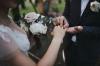 Оргагнизация и проведение свадьбы